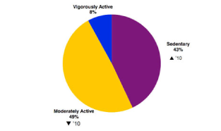 Activity Piechart